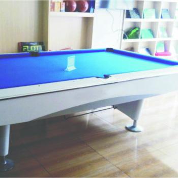 花式台球桌 RJ-4015